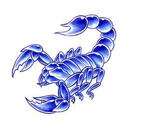 Blue_Scorpion_by_spiderewan